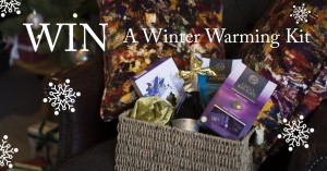 win-winter-kit-liberty-cushions