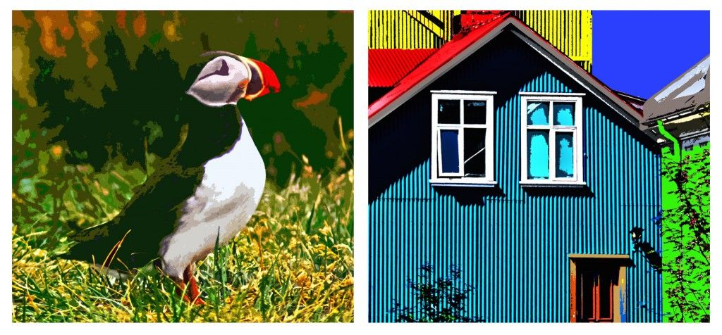 a collage of a puffin and a house screen print by Robin Ross